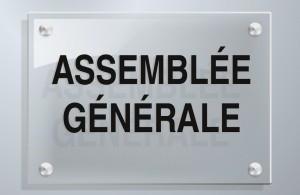 Fotolia_39644344_S-assemblée-générale-300x212